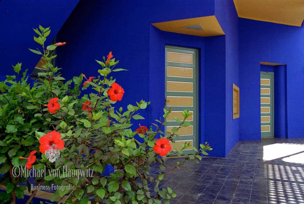 Die Gärten von Jacques Majorelle   Marrakech