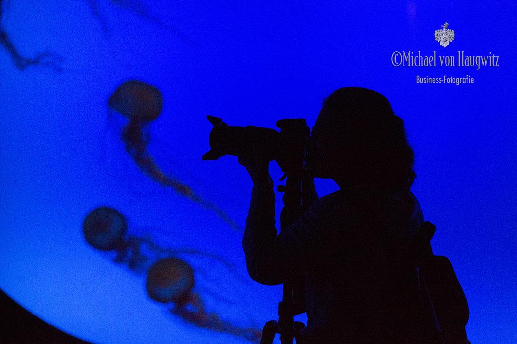 Aquarium | Shanghai