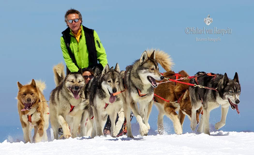 Hundeschlitten auf dem Glasier 3000   Schweiz