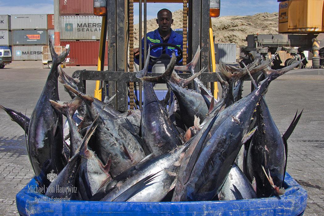 Thunfisch | Namibia